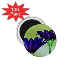 Osterspermum 1 75  Button Magnet (100 Pack) by Siebenhuehner