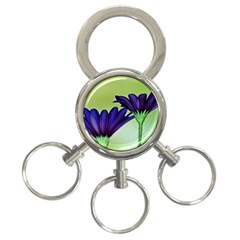 Osterspermum 3 Ring Key Chain by Siebenhuehner