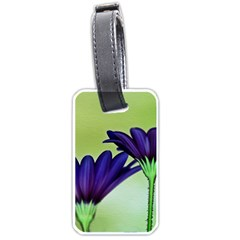 Osterspermum Luggage Tag (two Sides) by Siebenhuehner