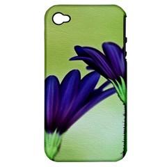 Osterspermum Apple Iphone 4/4s Hardshell Case (pc+silicone) by Siebenhuehner