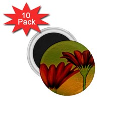Osterspermum 1 75  Button Magnet (10 Pack) by Siebenhuehner