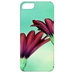 Osterspermum Apple Iphone 5 Classic Hardshell Case by Siebenhuehner