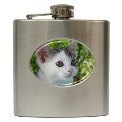 Young Cat Hip Flask by Siebenhuehner
