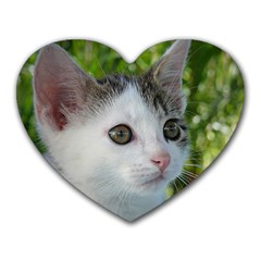 Young Cat Mouse Pad (Heart) by Siebenhuehner