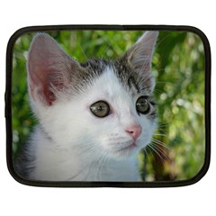 Young Cat Netbook Case (xl)