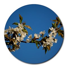 Cherry Blossom 8  Mouse Pad (round) by Siebenhuehner