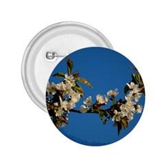 Cherry Blossom 2 25  Button by Siebenhuehner
