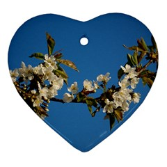 Cherry Blossom Heart Ornament (two Sides) by Siebenhuehner