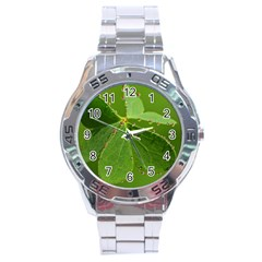 Drops Stainless Steel Watch (men s) by Siebenhuehner