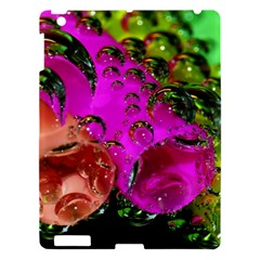 Tubules Apple Ipad 3/4 Hardshell Case by Siebenhuehner