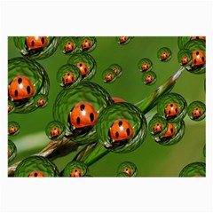 Ladybird Glasses Cloth (large, Two Sided) by Siebenhuehner