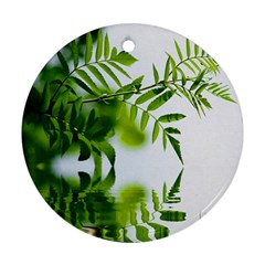 Leafs With Waterreflection Round Ornament (two Sides) by Siebenhuehner