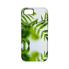 Leafs With Waterreflection Apple Iphone 5 Classic Hardshell Case (pc+silicone) by Siebenhuehner