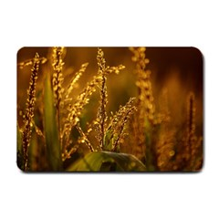 Field Small Door Mat by Siebenhuehner