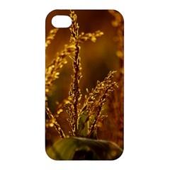 Field Apple Iphone 4/4s Premium Hardshell Case by Siebenhuehner