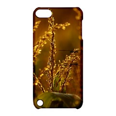 Field Apple Ipod Touch 5 Hardshell Case With Stand by Siebenhuehner