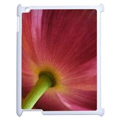 Poppy Apple Ipad 2 Case (white)