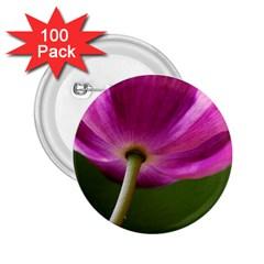 Poppy 2 25  Button (100 Pack) by Siebenhuehner
