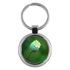 Poppy Capsules Key Chain (round) by Siebenhuehner
