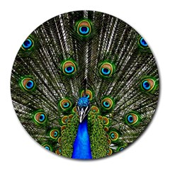 Peacock 8  Mouse Pad (round) by Siebenhuehner