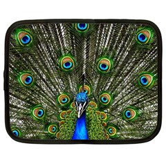 Peacock Netbook Case (large) by Siebenhuehner