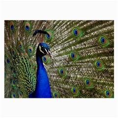 Peacock Glasses Cloth (large) by Siebenhuehner