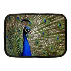 Peacock Netbook Case (medium) by Siebenhuehner