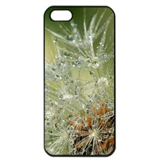 Dandelion Apple Iphone 5 Seamless Case (black) by Siebenhuehner