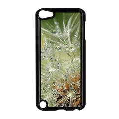 Dandelion Apple Ipod Touch 5 Case (black) by Siebenhuehner