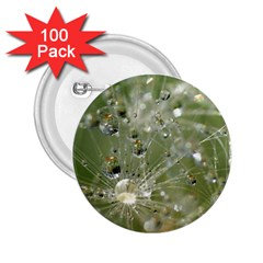 Dandelion 2 25  Button (100 Pack) by Siebenhuehner
