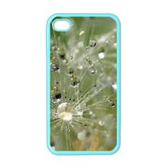 Dandelion Apple Iphone 4 Case (color)