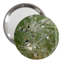 Dandelion 3  Handbag Mirror by Siebenhuehner