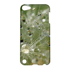 Dandelion Apple Ipod Touch 5 Hardshell Case by Siebenhuehner