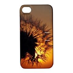 Dandelion Apple Iphone 4/4s Hardshell Case With Stand by Siebenhuehner