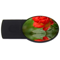 Rose 2gb Usb Flash Drive (oval) by Siebenhuehner
