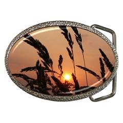 Sunset Belt Buckle (oval) by Siebenhuehner