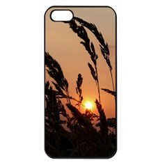 Sunset Apple Iphone 5 Seamless Case (black) by Siebenhuehner