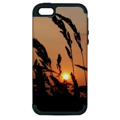 Sunset Apple Iphone 5 Hardshell Case (pc+silicone) by Siebenhuehner