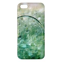 Dreamland Iphone 5s Premium Hardshell Case by Siebenhuehner