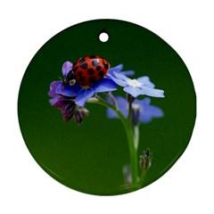 Good Luck Round Ornament by Siebenhuehner