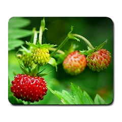Strawberry  Large Mouse Pad (rectangle) by Siebenhuehner