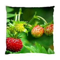 Strawberry  Cushion Case (single Sided)  by Siebenhuehner
