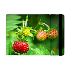 Strawberry  Apple Ipad Mini Flip Case by Siebenhuehner
