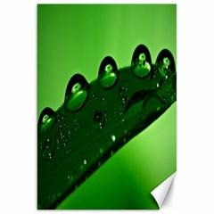 Waterdrops Canvas 20  X 30  (unframed) by Siebenhuehner