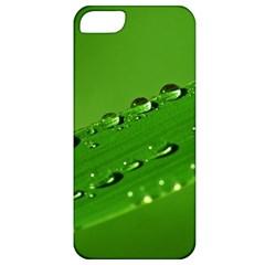 Waterdrops Apple Iphone 5 Classic Hardshell Case by Siebenhuehner
