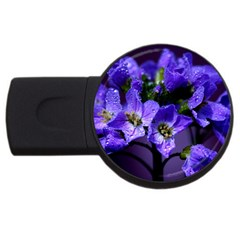 Cuckoo Flower 2gb Usb Flash Drive (round) by Siebenhuehner