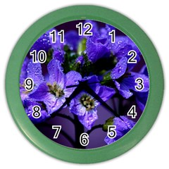 Cuckoo Flower Wall Clock (color) by Siebenhuehner