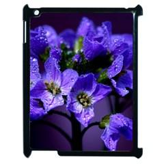 Cuckoo Flower Apple Ipad 2 Case (black) by Siebenhuehner