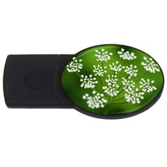 Queen Anne s Lace 4gb Usb Flash Drive (oval) by Siebenhuehner