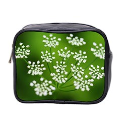 Queen Anne s Lace Mini Travel Toiletry Bag (two Sides) by Siebenhuehner